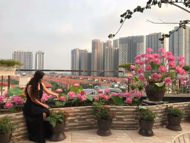Khu vườn trên sân thượng rộng 200m² đẹp ngỡ ngàng với trăm loài hoa đua nhau khoe sắc ở Hà Nội - Ảnh 2.
