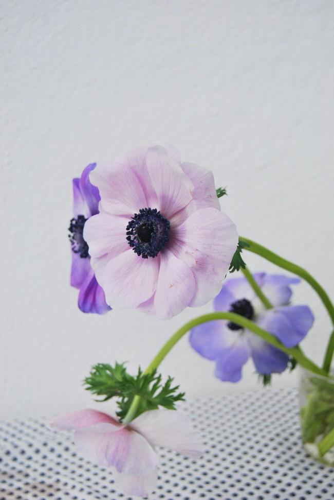 Mang vẻ đẹp tràn đầy sức sống của các loài hoa vào ngôi nhà với cách cắm hoa đơn giản  - Ảnh 1.