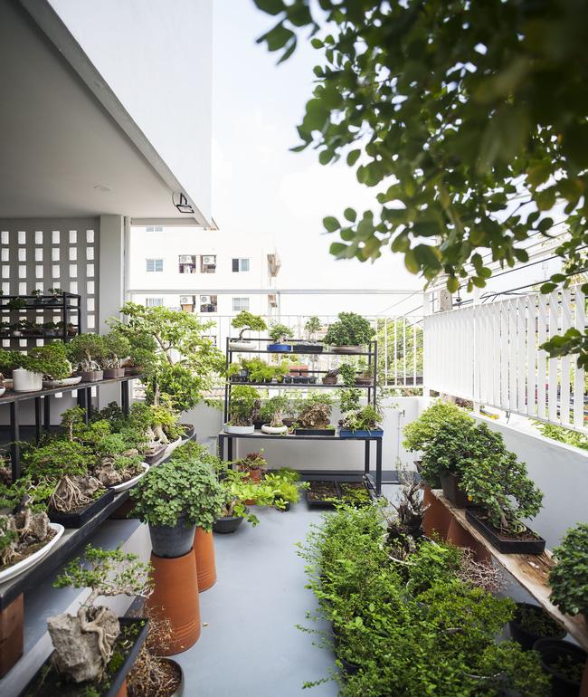 Ngôi nhà ống an yên với khu vườn bonsai khiến ai nhìn cũng ước ao - Ảnh 17.