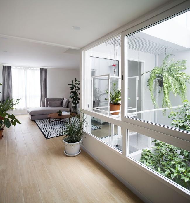 Ngôi nhà ống an yên với khu vườn bonsai khiến ai nhìn cũng ước ao - Ảnh 7.