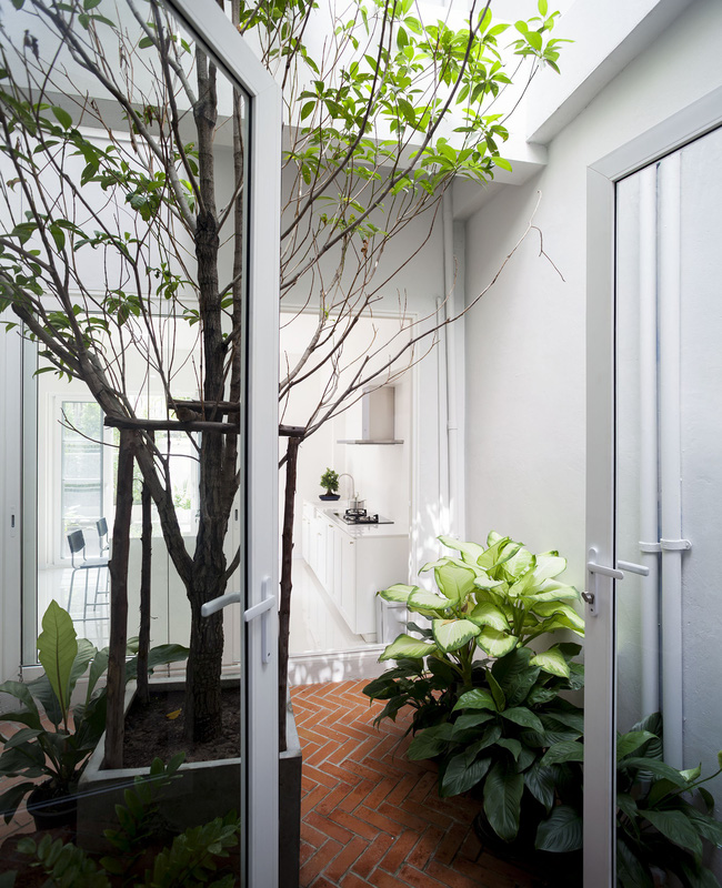 Ngôi nhà ống an yên với khu vườn bonsai khiến ai nhìn cũng ước ao - Ảnh 5.