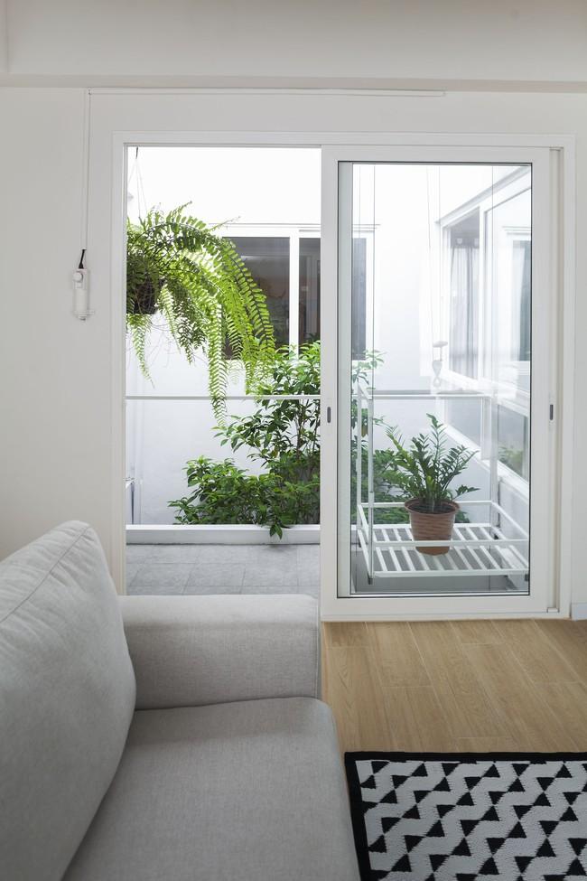 Ngôi nhà ống an yên với khu vườn bonsai khiến ai nhìn cũng ước ao - Ảnh 8.