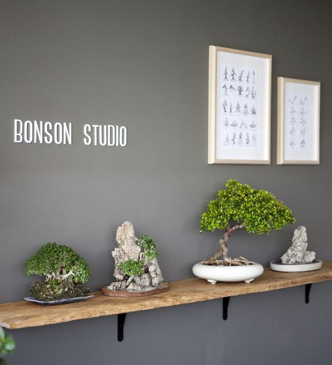 Ngôi nhà ống an yên với khu vườn bonsai khiến ai nhìn cũng ước ao - Ảnh 14.