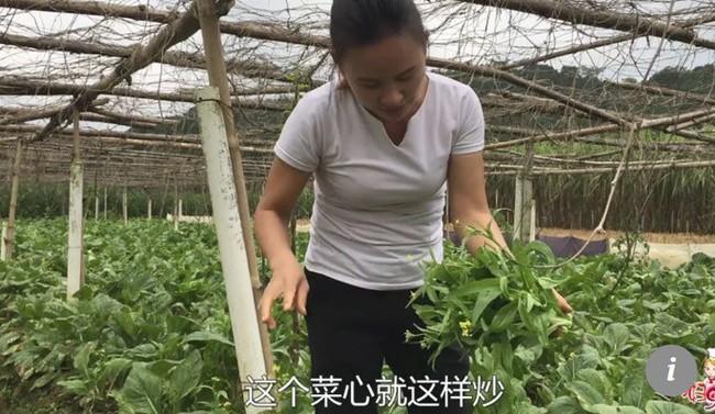 Chị nông dân bỗng thành ngôi sao MXH nhờ các video quê kiểng, một bước từ người thu nhập thấp thành doanh nhân triệu đô - Ảnh 3.