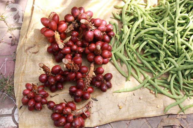 Lạc lối với những món ăn mang vị núi rừng ở chợ phiên nguyên sơ vùng cao Bắc Hà - Ảnh 16.