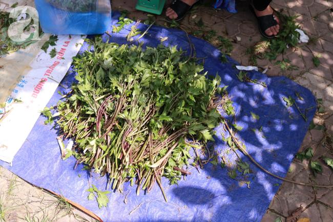 Lạc lối với những món ăn mang vị núi rừng ở chợ phiên nguyên sơ vùng cao Bắc Hà - Ảnh 17.