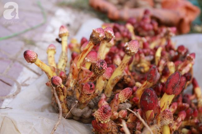 Lạc lối với những món ăn mang vị núi rừng ở chợ phiên nguyên sơ vùng cao Bắc Hà - Ảnh 20.