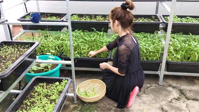 Khu vườn trên sân thượng nhỏ nhắn nhưng xanh mát mắt của bà mẹ hai con xinh đẹp Elly Trần - Ảnh 5.
