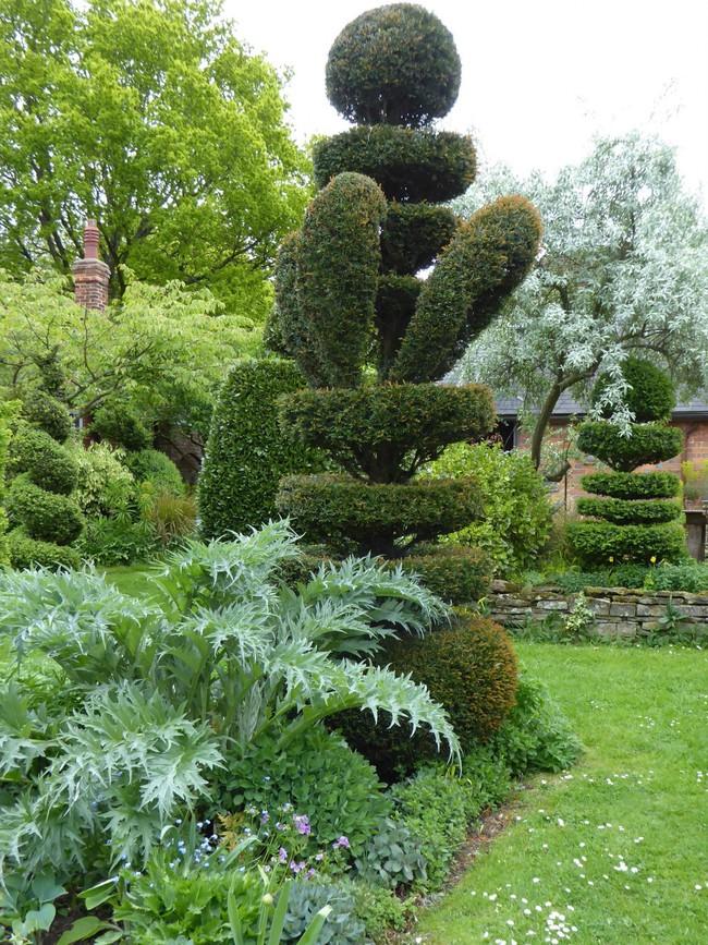 Người phụ nữ 70 tuổi biến ngôi nhà bỏ hoang thành khu vườn xinh đẹp nhờ tình yêu thiên nhiên - Ảnh 3.