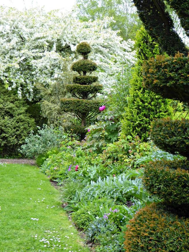 Người phụ nữ 70 tuổi biến ngôi nhà bỏ hoang thành khu vườn xinh đẹp nhờ tình yêu thiên nhiên - Ảnh 6.