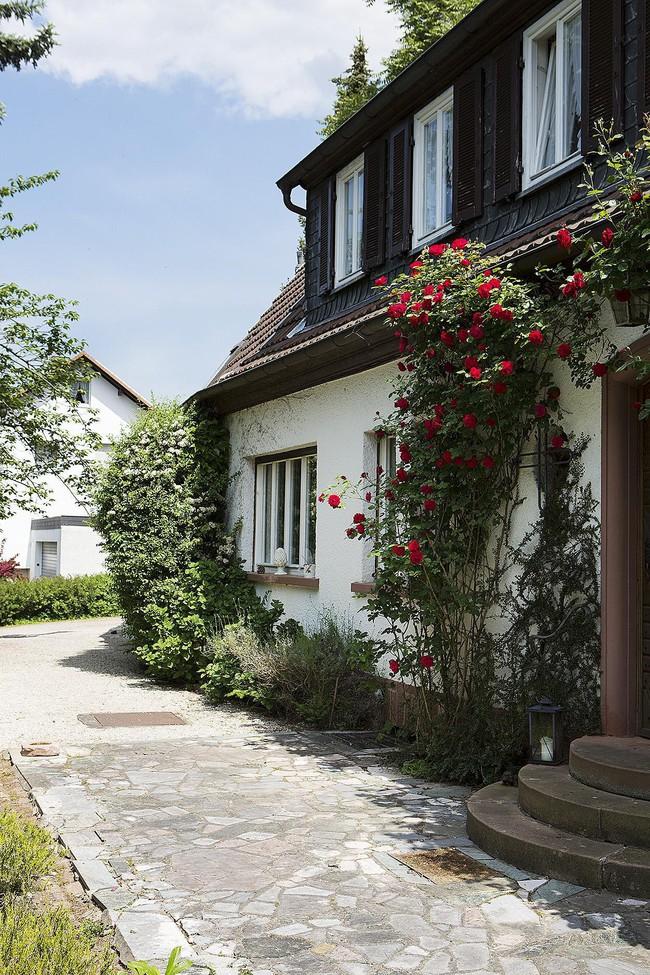 Ngôi nhà vườn ngập nắng rực rỡ sắc hoa nhìn thôi cũng đủ thấy lòng bình yên - Ảnh 4.