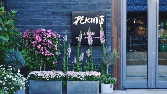 Cô gái độc thân sở hữu 1 nhà hàng và 1 căn nhà lúc nào cũng ngập tràn màu sắc của các loại hoa - Ảnh 11.
