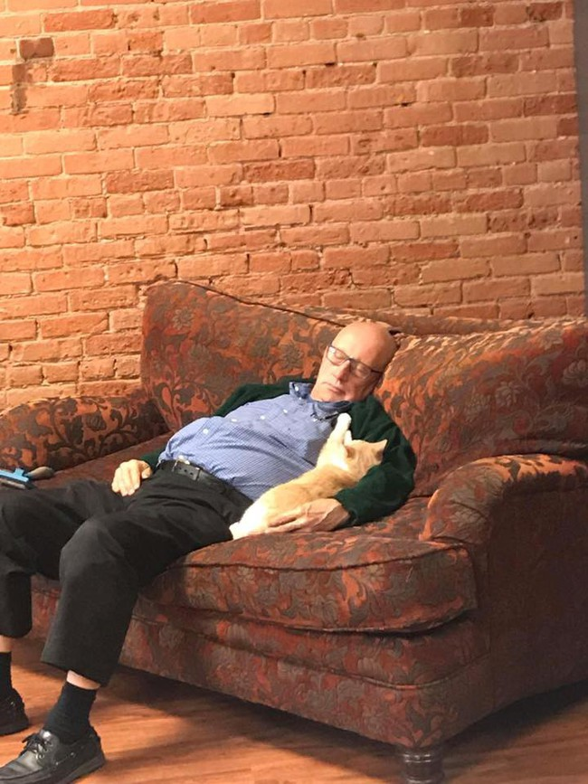 Đăng ảnh tình nguyện viên nằm ngủ say sưa cùng mèo, khu bảo trợ thú cưng nhận 1000 lượt truy cập mỗi phút, tiền tài trợ đủ cho cả năm - Ảnh 4.