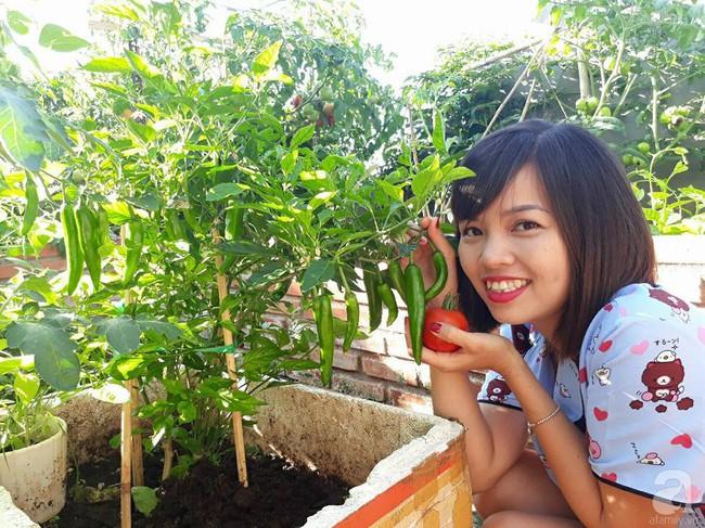 Khu vườn sân thượng tuy nhỏ nhưng bạt ngàn rau sạch của người chồng dồn sức chăm bón cho vợ con ở Vũng Tàu - Ảnh 3.
