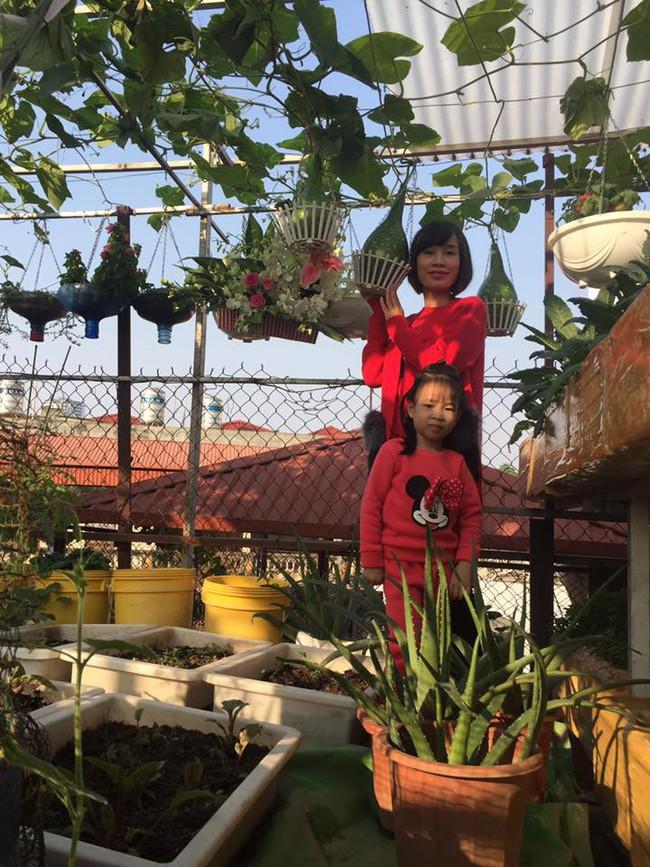 Khu vườn trên sân thượng 45m² nhưng có giàn bầu và mướp quả to đến bất ngờ của bà mẹ hai con ở Hà Nội - Ảnh 2.