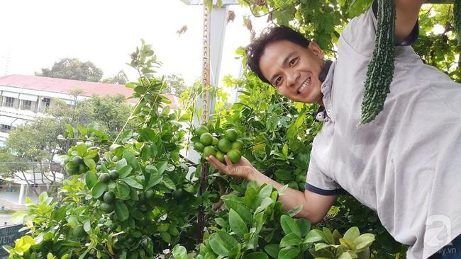 Khu vườn sân thượng tuy nhỏ nhưng bạt ngàn rau sạch của người chồng dồn sức chăm bón cho vợ con ở Vũng Tàu - Ảnh 1.