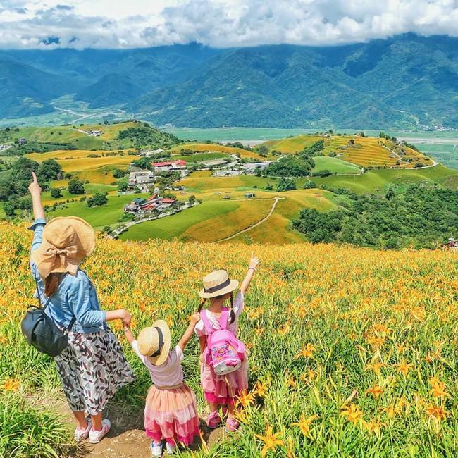 Dù ở vùng hẻo lánh, rừng hoa kim châm đẹp mê hồn ở Đài Loan vẫn cực hút khách, tháng 9 này bạn nên đi ngay kẻo lỡ - Ảnh 3.