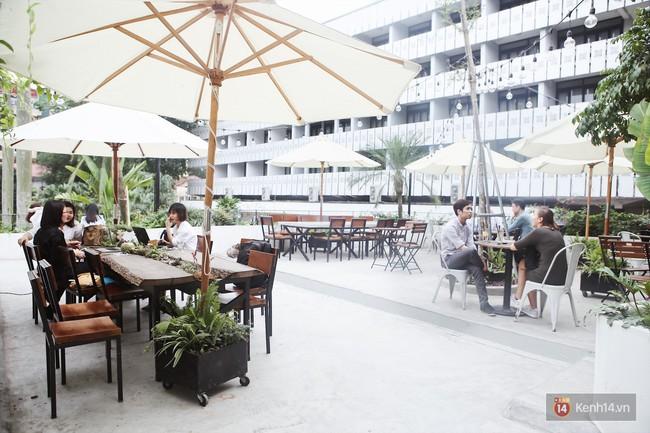 Hà Nội: 3 quán cà phê xanh mướt, mát rượi cực hợp để đi vào những ngày đầu thu - Ảnh 16.
