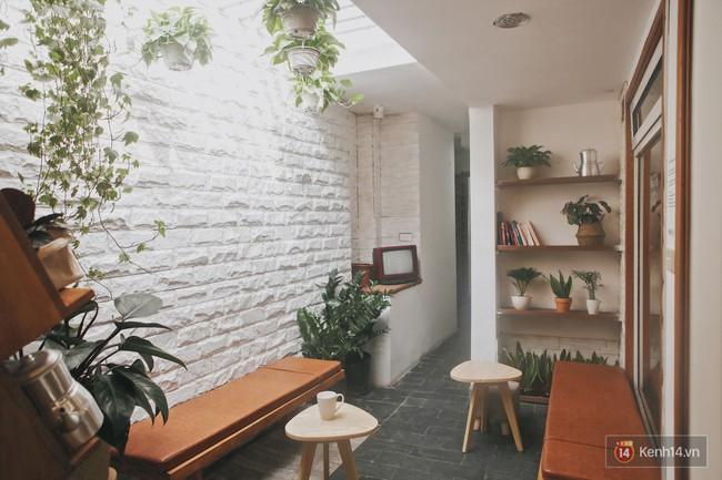 Hà Nội: 3 quán cà phê xanh mướt, mát rượi cực hợp để đi vào những ngày đầu thu - Ảnh 22.