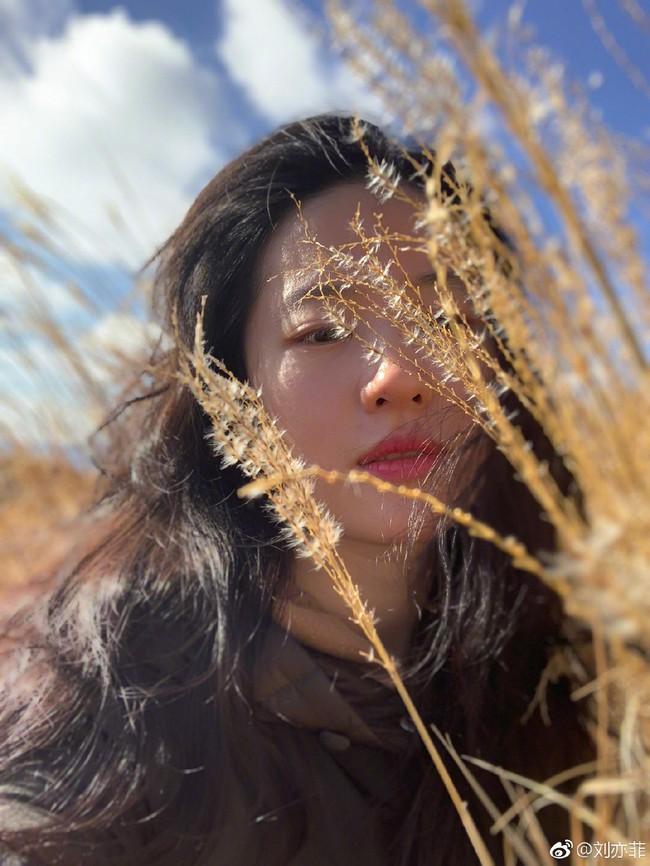 Lưu Diệc Phi xinh đẹp hoàn hảo trong những bức hình ngày thường, hé lộ người bạn thân nhất  - Ảnh 7.