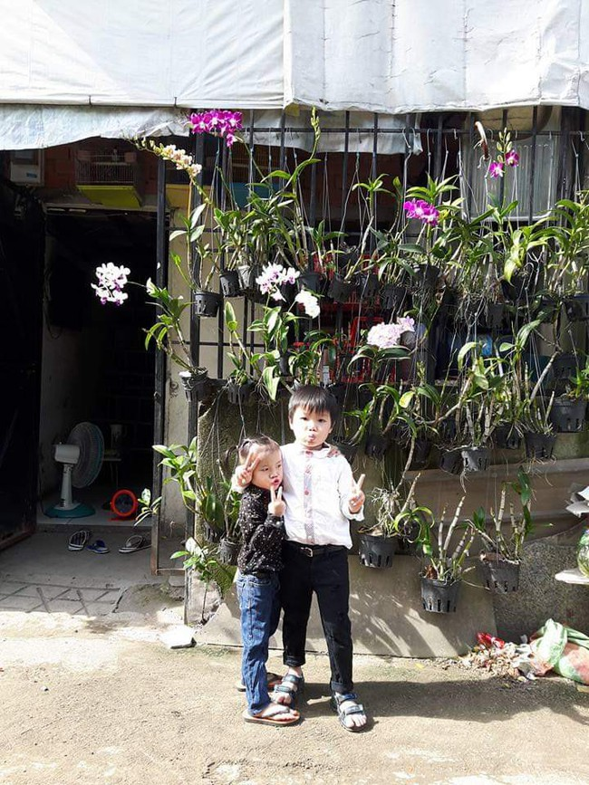 Tôi chỉ mong có được ngôi nhà bằng mảnh sân nhỏ ở thành phố và tôi đã đạt ước nguyện - Ảnh 2.