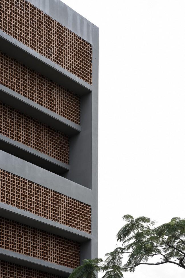 Ngôi nhà 43m² có thiết kế đặc biệt để tránh côn trùng và ô nhiễm ở Sài Gòn - Ảnh 5.
