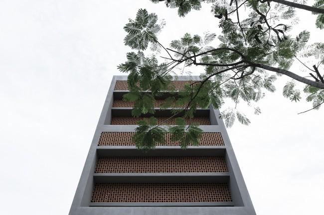 Ngôi nhà 43m² có thiết kế đặc biệt để tránh côn trùng và ô nhiễm ở Sài Gòn - Ảnh 4.
