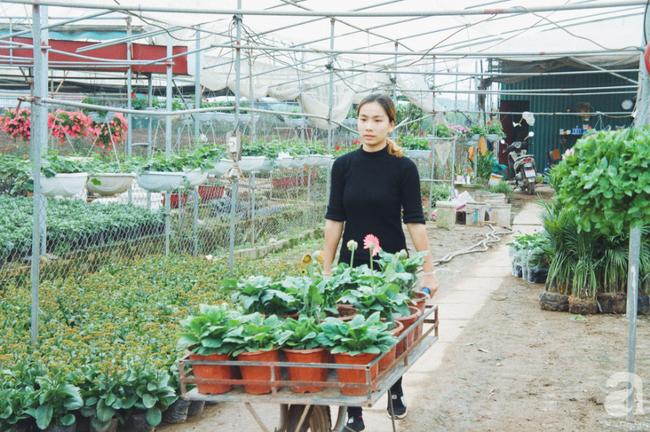 Khung cảnh tấp nập chở Tết về nhà tại chợ cây cảnh Xuân Quan, gây chú ý nhất là loại hoa mới nổi này - Ảnh 22.