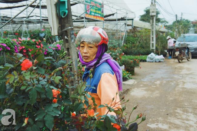 Khung cảnh tấp nập chở Tết về nhà tại chợ cây cảnh Xuân Quan, gây chú ý nhất là loại hoa mới nổi này - Ảnh 5.