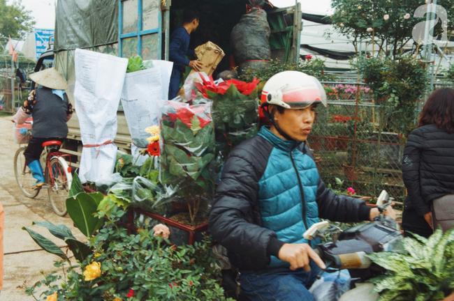 Khung cảnh tấp nập chở Tết về nhà tại chợ cây cảnh Xuân Quan, gây chú ý nhất là loại hoa mới nổi này - Ảnh 13.