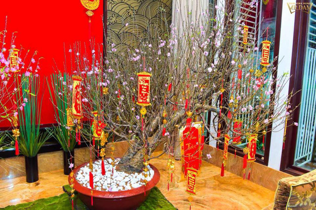 Ngắm những ngôi nhà tiền tỷ của sao Việt lung linh khoe đào quất đón Tết Nguyên Đán - Ảnh 12.