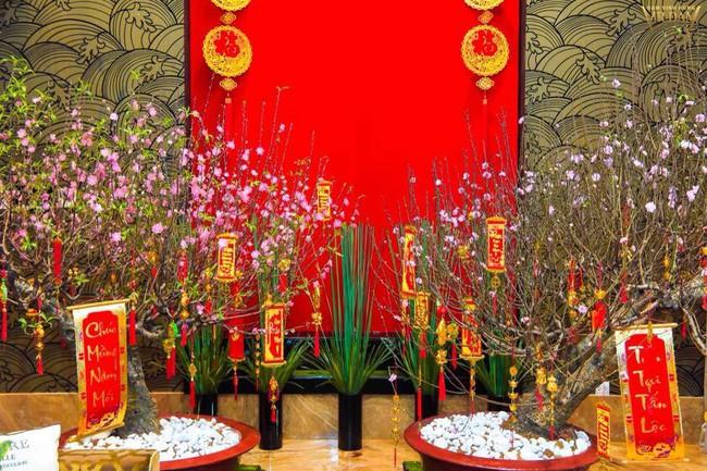 Ngắm những ngôi nhà tiền tỷ của sao Việt lung linh khoe đào quất đón Tết Nguyên Đán - Ảnh 1.