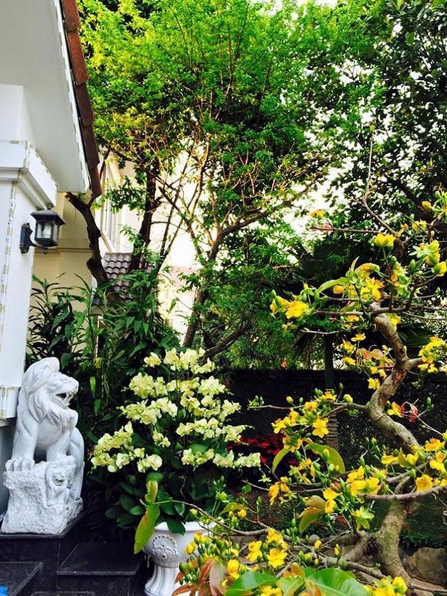 Ngắm những ngôi nhà tiền tỷ của sao Việt lung linh khoe đào quất đón Tết Nguyên Đán - Ảnh 24.