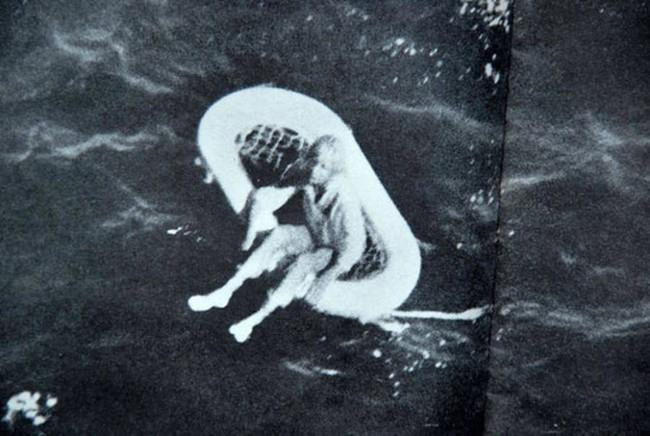 Bức ảnh đứa trẻ mồ côi lênh đênh trên biển hé lộ vụ thảm sát gia đình 4 người đáng sợ, chuyến nghỉ dưỡng hóa bi kịch sau 1 đêm - Ảnh 1.