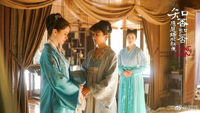 Đáng thương như Phùng Thiệu Phong: Đẹp trai ngời ngời, vậy mà vừa đi hỏi vợ đã bị từ chối phũ phàng - Ảnh 3.