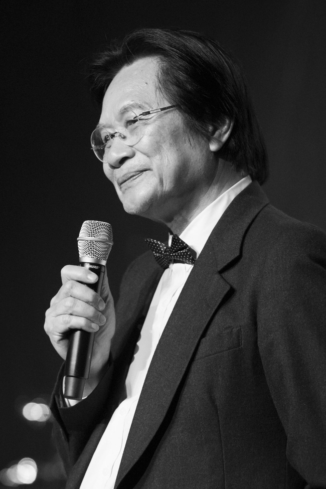 Sau đổ vỡ hôn nhân, Hồng Nhung vẫn đẹp nồng nàn và hát tình ca say đắm thế này - Ảnh 11.