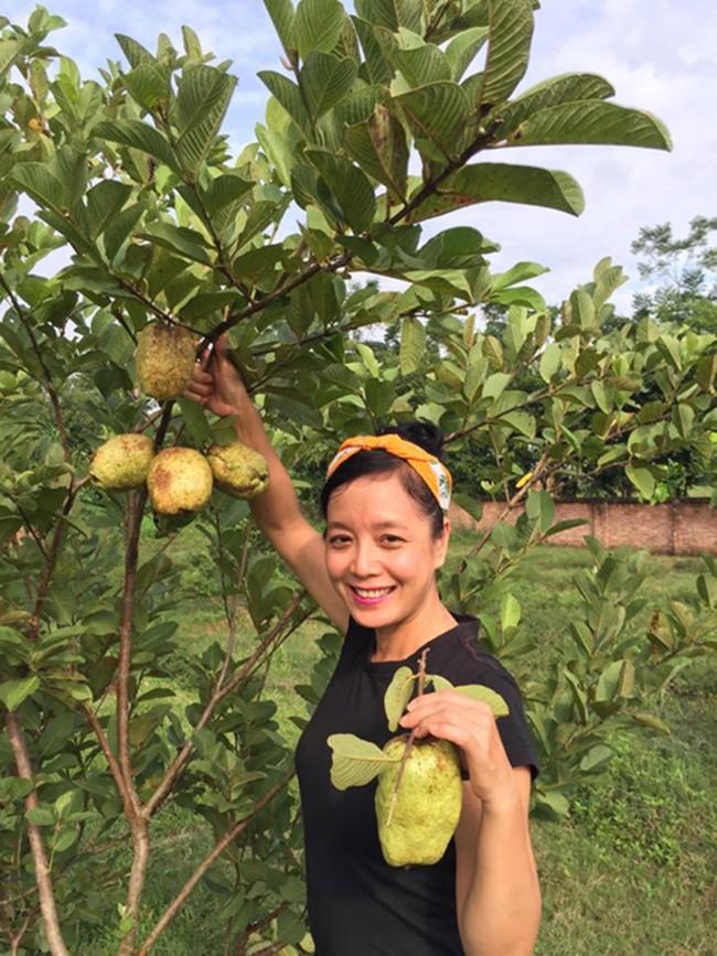 Sát Tết, NSƯT Chiều Xuân thu hoạch cả nghìn quả bưởi ở khu vườn của gia đình - Ảnh 18.