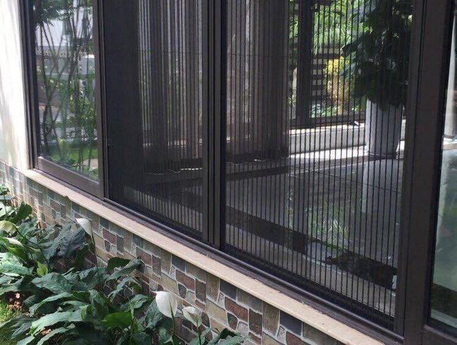 Khuyến cáo cách chống và đuổi kiến ba khoang tại nhà mà không cần dùng tới các hóa chất độc hại - Ảnh 7.