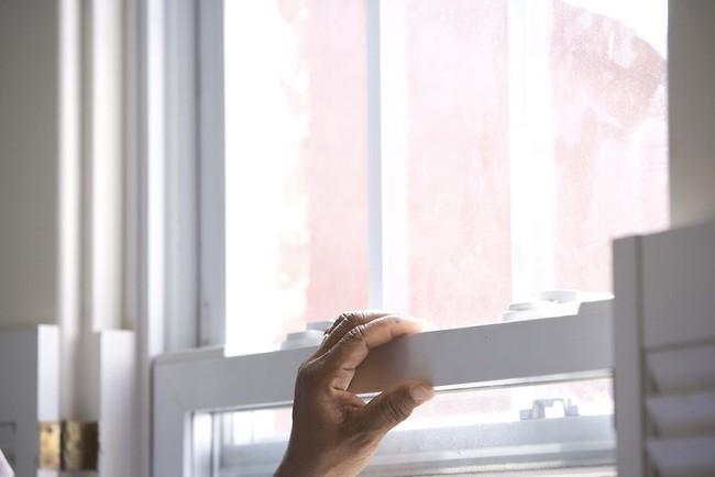 Khuyến cáo cách chống và đuổi kiến ba khoang tại nhà mà không cần dùng tới các hóa chất độc hại - Ảnh 4.