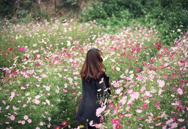 Cẩm nang du lịch Đà Lạt tháng 10: Các mùa hoa nở rộ hết cả rồi, nhà mình còn đợi gì mà chưa đi? - Ảnh 4.