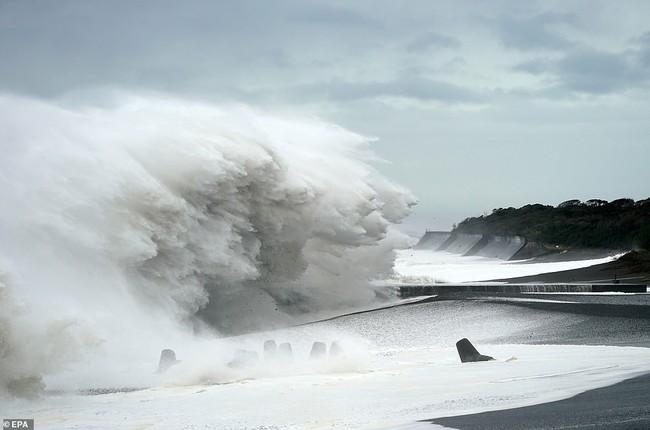 Chuyện về Nhật Bản: Đất nước chịu nhiều thiên tai kinh khủng và cách bảo vệ người dân khiến cả thế giới thán phục - Ảnh 5.