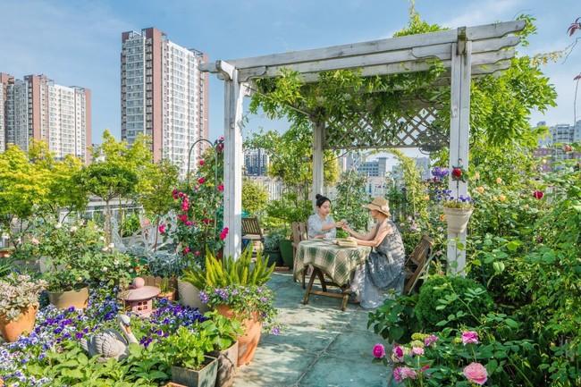 Tận dụng mái nhà bỏ hoang, người phụ nữ yêu hoa biến không gian thành khu vườn dịu dàng sắc hoa - Ảnh 2.
