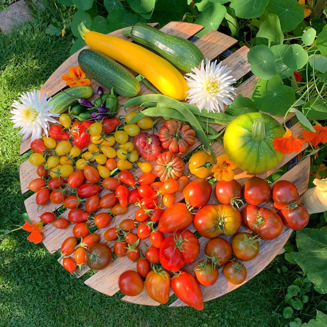 Vườn rau nhỏ đủ loại tươi tốt của chàng trai 18 tuổi đam mê trồng trọt - Ảnh 11.
