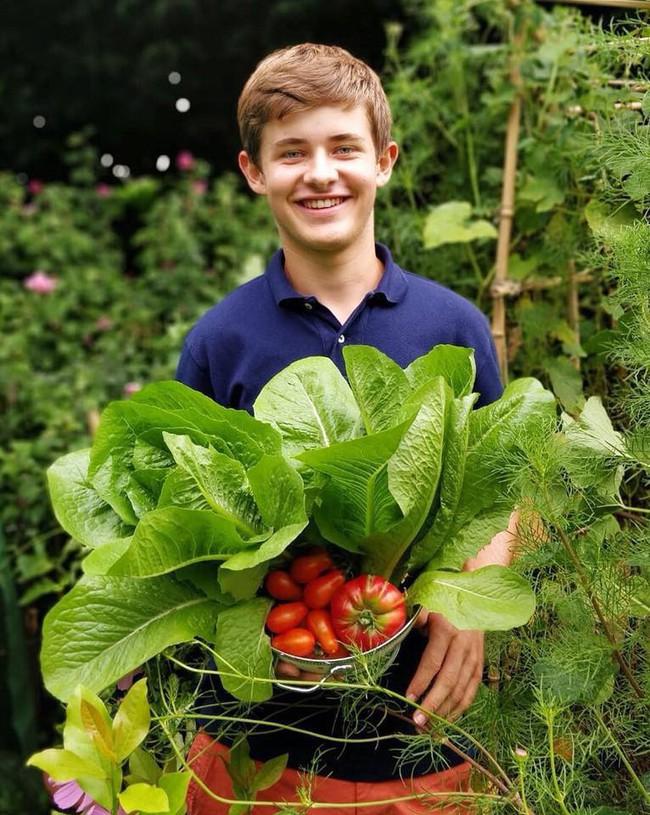Vườn rau nhỏ đủ loại tươi tốt của chàng trai 18 tuổi đam mê trồng trọt - Ảnh 4.