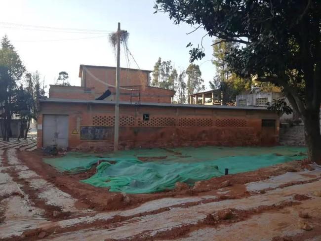 Nữ phóng viên từ bỏ công việc để cải tạo nhà xưởng cũ đã bị phá hủy thành ngôi nhà hoa rộng 600m2 - Ảnh 4.