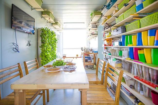 """Người đàn ông 57 tuổi vừa có sự nghiệp vừa tạo lập vườn rau xanh ở """"biệt thự"""" container tặng vợ - Ảnh 12."""