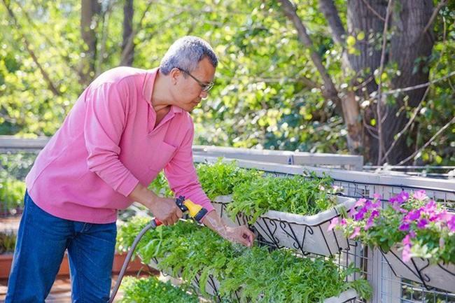 """Người đàn ông 57 tuổi vừa có sự nghiệp vừa tạo lập vườn rau xanh ở """"biệt thự"""" container tặng vợ - Ảnh 1."""