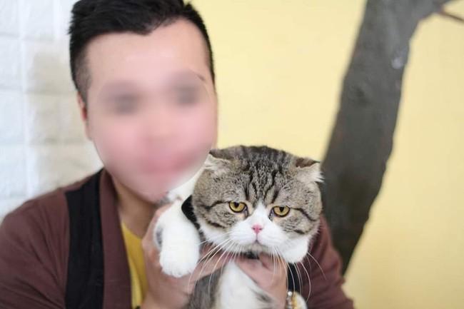 """Cô gái hỏi chỗ mua mèo, thanh niên """"hoàng tộc"""" giãy nảy như đỉa phải vôi khiến dân mạng nháo nhào đòi tặng quà muộn 20/10 - Ảnh 2."""