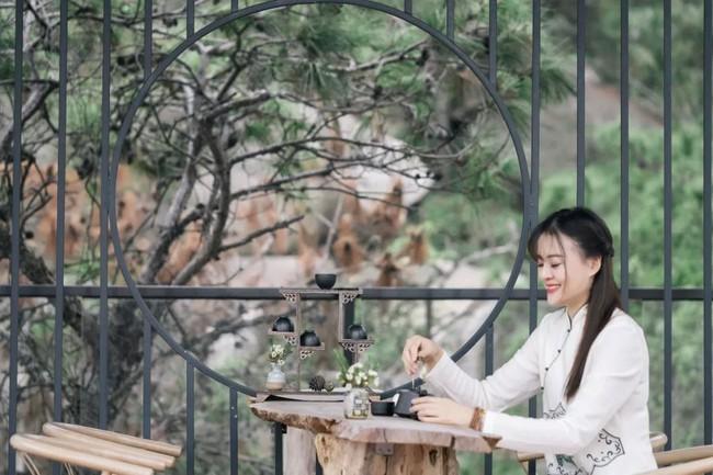 Người phụ nữ dành cả phần còn lại của cuộc đời mình cho việc tạo không gian sống đẹp yên bình trên núi - Ảnh 2.