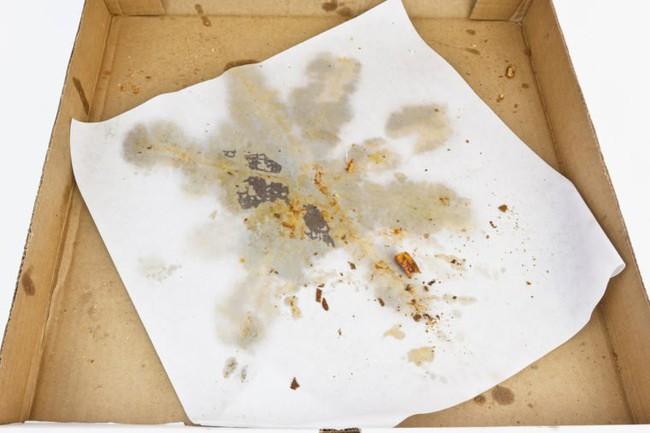 Tiết lộ 11 sản phẩm tiêu dùng của con người không thể tái chế mà nhiều người vẫn còn đang lầm tưởng - Ảnh 1.
